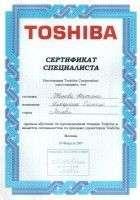 Интерлинк 2007 Toshiba