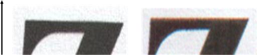 potusknenie-granic-1.jpg