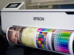 "Epson SureColor SC-T3100, T3100N. Печати фотографии пигментом"""