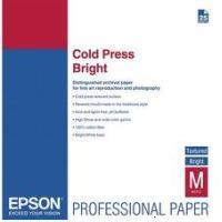 Epson C13S042310