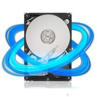Seagate ST31000524AS