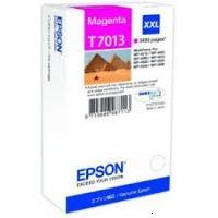 Epson T7013 (C13T70134010)