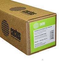 Cactus CS-LFP80-610457