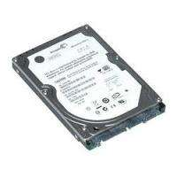 Seagate ST250LM004
