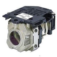 NEC LT30LP (50029555)