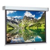 Projecta Hapro CSR 228x300 High Contrast (10200350)