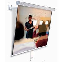 Projecta FlexScreen 160x160 MW + (10200059)