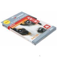 Lomond 0102152