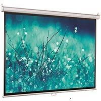Viewscreen Scroll (1:1) 220х220 (220х220) MW (WSC-1106)