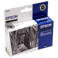 Epson T0481 (C13T04814010)