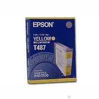 Epson T487 (C13T487011)