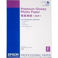 Epson C13S042091